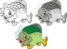 Nice fish Stock Images