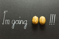 Illustrated phrase I am going nuts. Concept of the phrase I`m going nuts with brown nuts and white hand writing on black paper background Stock Photography