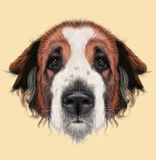 Illustrated Portrait of Moscow Watchdog dog Royalty Free Stock Photo