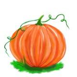 Illustrated pumpkin isolated halloween. Illustrated halloween orange pumpkin on grass white background stock illustration
