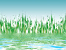 Illustrated reed pond panorama Royalty Free Stock Image