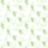 Illustrated seamless background with green branches. Illustrated seamless pattern with green branches on a white background Royalty Free Stock Photography