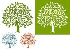 Illustrated set of oak trees vector illustration