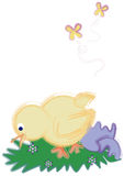 Illustrated Spring chick. Royalty Free Stock Photo