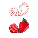 Illustrated strawberries Stock Photos