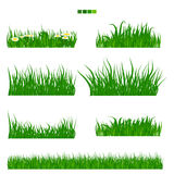Illustrated vector green grass with flower and leaf set Royalty Free Stock Image