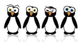 Illustrated vector pinguins Stock Images