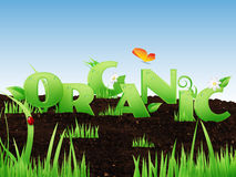 Illustrated word Organic Stock Images