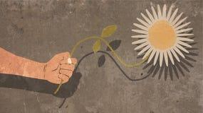Illustratie die van Hand een Witte die Bloem houden op Concrete Muur met Schaduw wordt geschilderd Stock Afbeelding