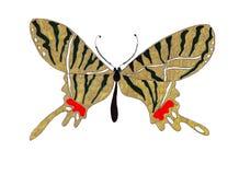 Illustratie hand-drawn vlinders van verschillende patronen Royalty-vrije Stock Afbeelding