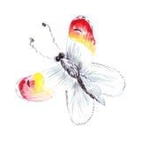 Illustratie hand-drawn vlinders van verschillende patronen Royalty-vrije Stock Foto