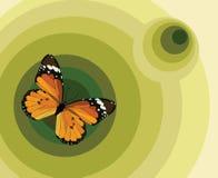 Illustratie met een vlinder Stock Fotografie