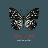 Illustratie met een vlinder Stock Foto