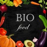 Illustratie met groenten op een zwarte stock foto's