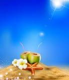 Illustratie met kokosnotencocktai Stock Foto