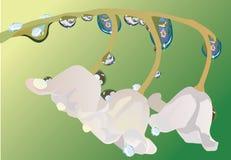 Illustratie met lelie-van-de-vallei bloem Royalty-vrije Stock Foto's