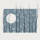 Illustratie met veel bamboe in Aziatische stijl. Stock Fotografie
