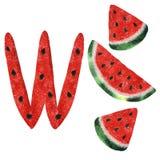 Illustratie met waterverfwatermeloen royalty-vrije illustratie