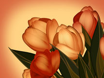 Achtergrond van tulpen Stock Foto's