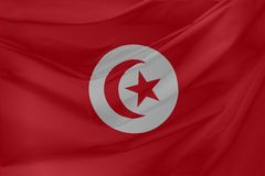 Illustratie van de Golvende Vlag van Tunesië Stock Afbeelding