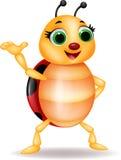 De grappige golvende hand van het lieveheersbeestjebeeldverhaal Stock Foto's
