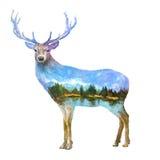 Illustratie van de herten de dubbele blootstelling royalty-vrije illustratie