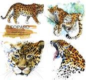 Illustratie van de luipaard de hand getrokken waterverf vector illustratie