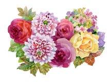 Illustratie van de tuin de bloeiende bloemen van de waterverfherfst op witte achtergrond Stock Foto