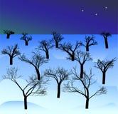 Illustratie van de winternacht in het bos Stock Fotografie