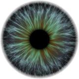 Illustratie van donkerblauw met oranje menselijke iris Royalty-vrije Stock Fotografie