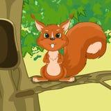 Illustratie van eekhoorn in de boom Stock Foto
