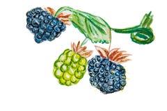 Illustratie van een bos van druiven Stock Foto