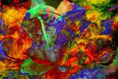 Illustratie van een gekleurde vlinder met bloem, gemengde media, abstracte kleurenachtergrond Stock Fotografie