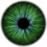 Illustratie van een groene menselijke iris Royalty-vrije Stock Afbeelding