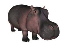 Illustratie van een hippo Stock Fotografie