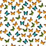 Illustratie van een kleurrijke vlinder Stock Afbeelding