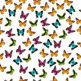 Illustratie van een kleurrijke vlinder Royalty-vrije Stock Afbeelding