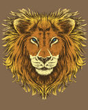 Illustratie van een leeuw Stock Afbeeldingen
