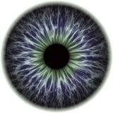 Illustratie van een menselijke iristextuur Stock Foto