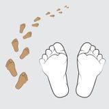 illustratie van een menselijke voet op een witte achtergrond Royalty-vrije Stock Fotografie