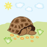 Illustratie van een schildpad op een achtergrond van gras en hemel Royalty-vrije Stock Afbeelding