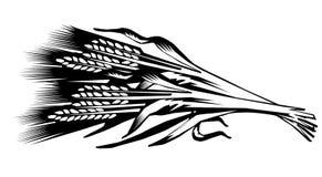 Illustratie van een schoof van kegels van tarwe Royalty-vrije Stock Fotografie