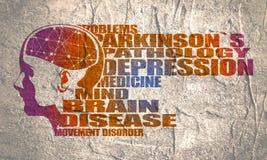 Illustratie van een vrouwenhoofd met hersenen stock illustratie