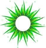 Illustratie van gras en lieveheersbeestje Stock Foto's
