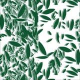 Illustratie van groen gebladerte naadloos patroon Stock Afbeelding