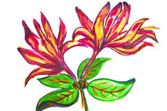 Illustratie van grote rode bloemen Stock Afbeeldingen