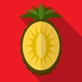 Illustratie van het ananas de vlakke pictogram royalty-vrije illustratie