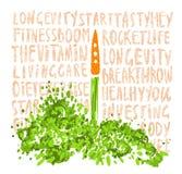 Illustratie van het concept een gezonde levensstijl Wortelen met halmen, die als een raket met ongeveer het van letters voorzien  Royalty-vrije Stock Fotografie