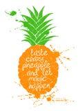 Illustratie van het geïsoleerde oranje silhouet van het ananasfruit Royalty-vrije Stock Foto's