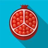 Illustratie van het granaatappel de vlakke pictogram stock illustratie